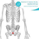 kysti-kokkygos-charisis-christos-xeirourgos-thessaloniki-thermi-robotiki-xeirourgiki